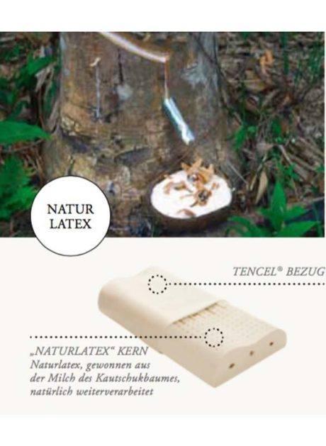 Naturlatex wird zu 100% aus der Milch des Kautschukbaumes gewonnen. Das Nackenstützkissen ist für Allergiker geeignet und entspannt nachhaltig die Nacken-Muskulatur. TENCEL® Holzfaser im Jersey Überzug für atmungsaktiven gesunden guten Schlaf