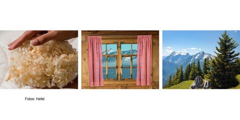 Zirbe als Flock, Fenster und Holz