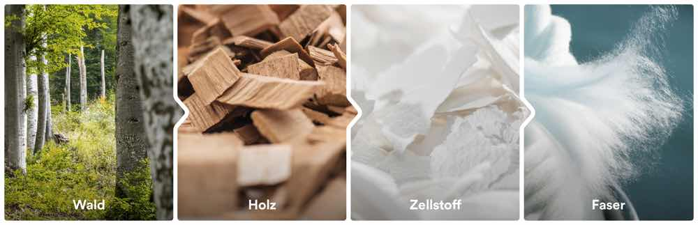 Lenzing Produktionsprozess vom Holz zur Faser
