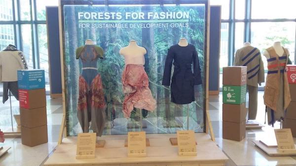Made in Forest Film der Vereinten Nationen über die Umweltbelastung der Mode