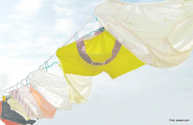 Eco-Fashion Trend bei Unterwäsche