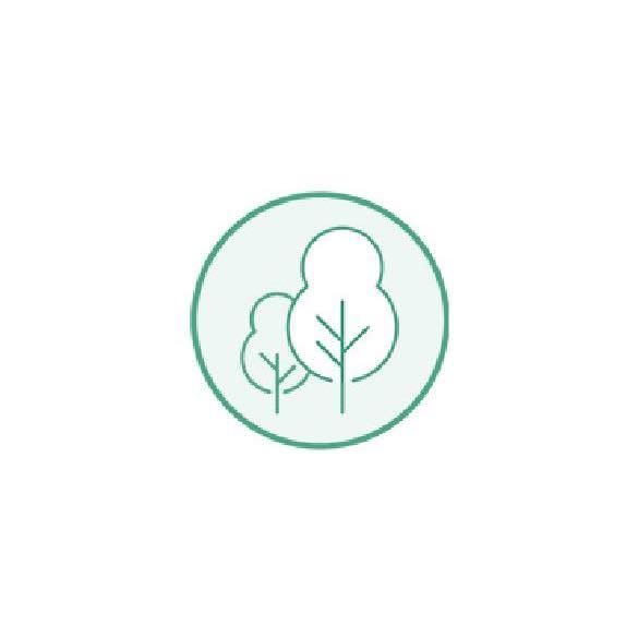 TENCEL™ ist botanischen somit natürlichen Ursprungs